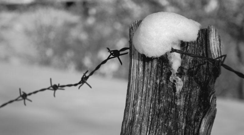 Recinto Olocausto Shoah