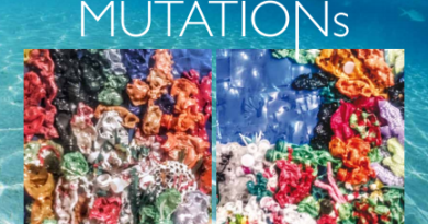 Venezia, precisazioni su evento Mutation