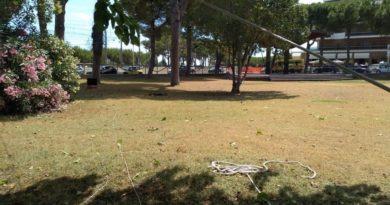 riapertura parco della pace pineto