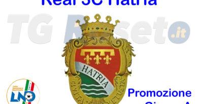 real 3c hatria