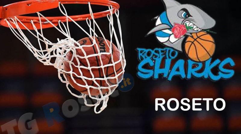 roseto sharks