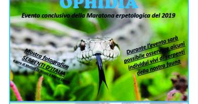 Ophidia