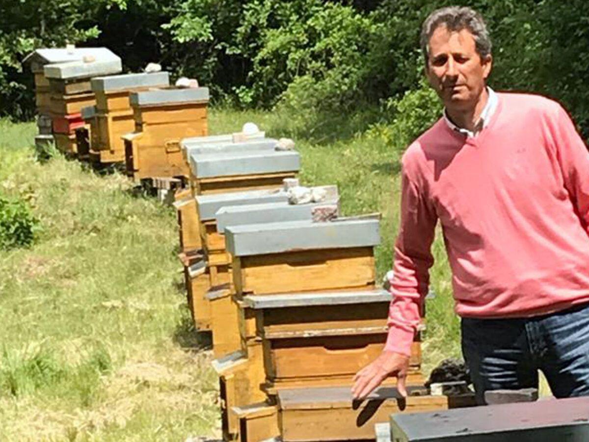 api aielli